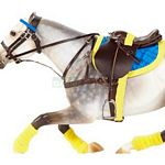 Polo Tack and Saddle Set - Limited Edition