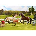 Sport Horse Family Set - Breyer Classics - 1:12 scale  (Breyer 61061)