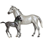 Grey Thoroughbred and Dark Grey Foal