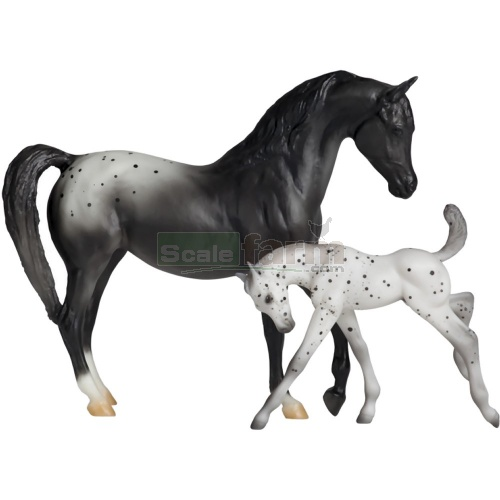 Black Blanket Appaloosa and Leopard Appaloosa Foal (Breyer 62032)