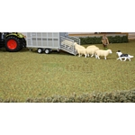 Field - Autumn Grass - Brushwood Toys  (Brushwood BT2083)