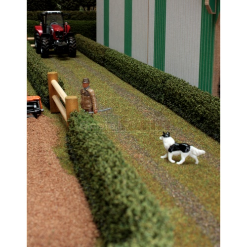 Farm Track (Brushwood BT2088)