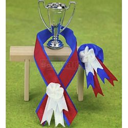 Championship Winner's Cup and Ribbon Set - Julip Horse of the Year (Julip 1613)