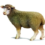 Sheep, standing - Schleich World of Nature - Farm Life  (Schleich 13283)