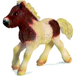 Shetland Pony Foal - Schleich World of Nature - Farm Life  (Schleich 13608)
