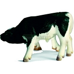 Holstein Calf, suckling - Schleich World of Nature - Farm Life  (Schleich 13615)