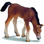 Arabian Foal, grazing - Schleich World of Nature - Farm Life  (Schleich 13652)