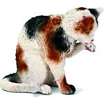 Cat, grooming - Schleich World of Nature - Farm Life  (Schleich 13675)