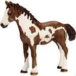Pinto Yearling - Schleich World of Nature - Farm Life  (Schleich 13695)