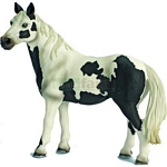 Pinto Mare - Schleich World of Nature - Farm Life  (Schleich 13696)