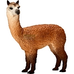 Alpaca Stallion - Schleich World of Nature - Farm Life  (Schleich 13703)
