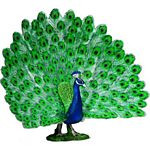 Peacock - Schleich World of Nature - Farm Life  (Schleich 13728)