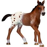Appaloosa Foal - Schleich World of Nature - Farm Life  (Schleich 13733)