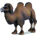 Camel - Schleich World of Nature - Wild Life  (Schleich 14348)