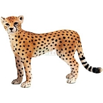 Cheetah, Female - Schleich World of Nature - Wild Life  (Schleich 14614)