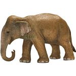 Asian Elephant, Female - Schleich World of Nature - Wild Life  (Schleich 14654)